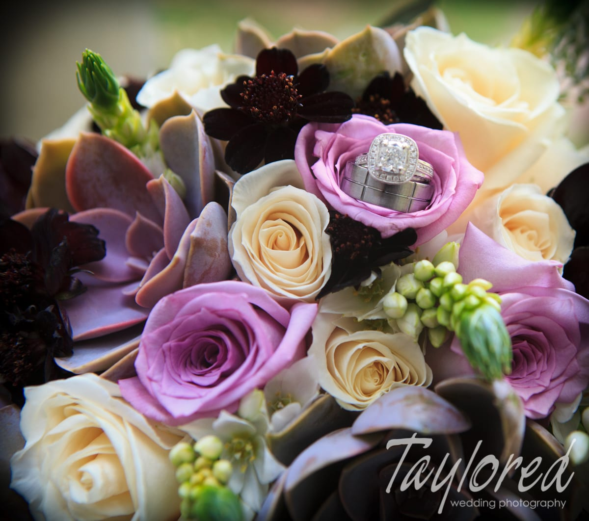 Taylored Photo Memories - Las Vegas Wedding Photographer - 3
