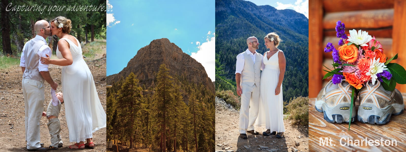 Mt. Charleston Wedding | Las Vegas Elopement Photographer