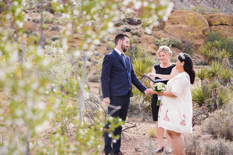 Small Las Vegas Weddings Las Vegas Photographers