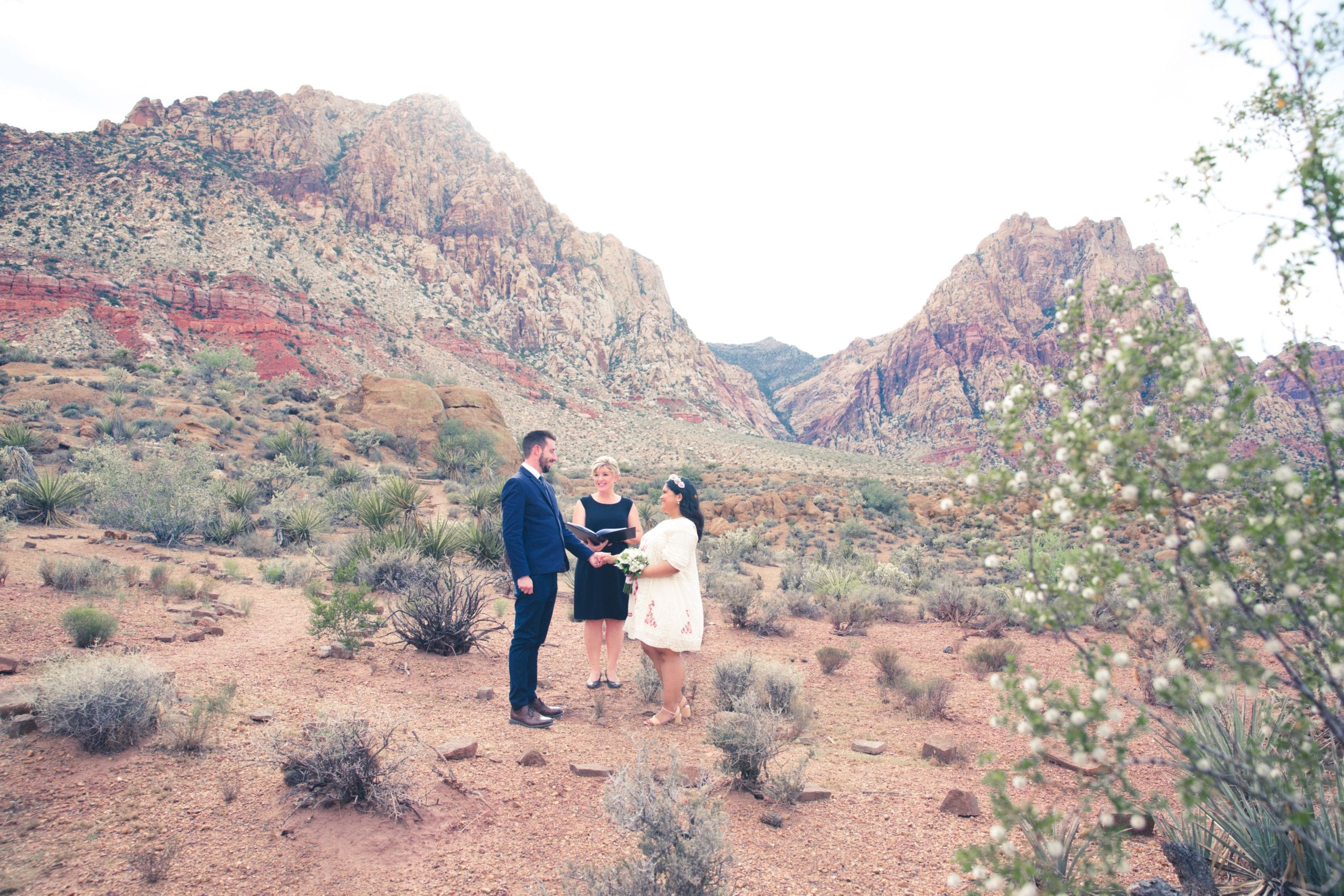 Gorgeous Spring Mountain Ranch Wedding in red Rock Canyon
