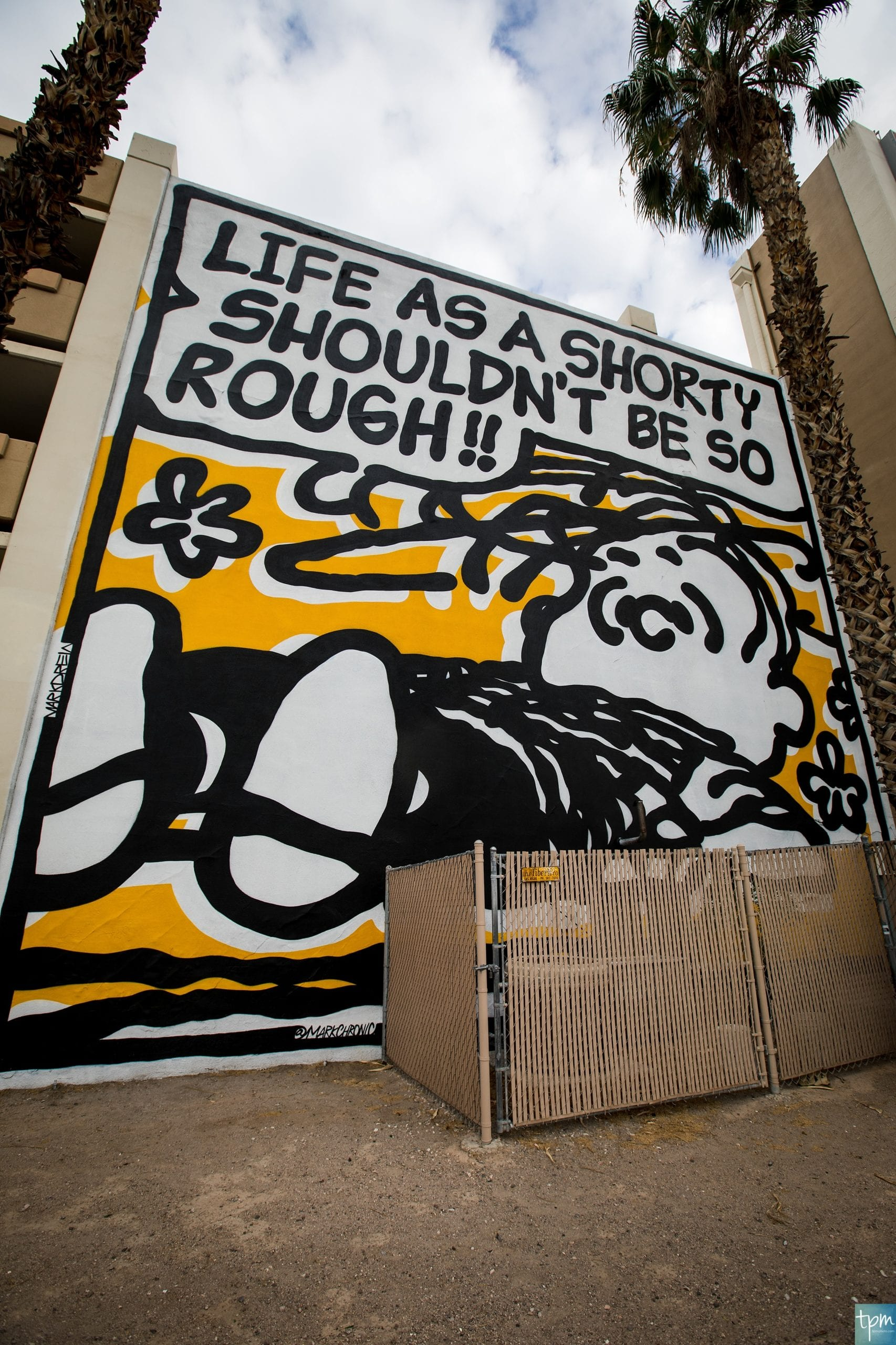 Mark Drew, Linus Mural, Fremont Street, Taylored Photo Memories, Las Vegas Murals